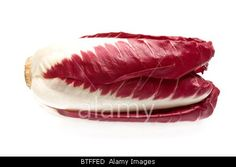Royalty free stock photography at Alamy: Red chicory Isolated on white background.