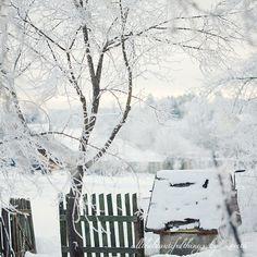 Winter Time by loretoidas, via Flickr