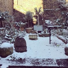 Loved yesterdays #snowy  scene in the garden @howe36bournestreet