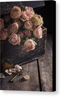Ideas For Flowers Pink Wallpaper Ana Rosa Vintage Flowers, Dried Flowers, Beautiful Flowers, Elegant Flowers, Vintage Pink, Vintage Art, Beautiful Pictures, Vintage Chest, Shabby Chic Flowers