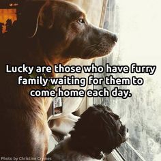 Lucky are those who