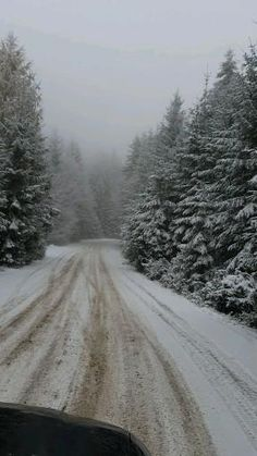 #winter #snow #with #love #friends #sunday #woods #road #trip #fam Winter Snow, Woods, Road Trip, Sunday, Friends, Travel, Outdoor, Instagram, Amigos