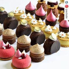 Understanding French Desserts - Useful Articles Small Desserts, French Desserts, Gourmet Desserts, Plated Desserts, Dessert Recipes, Pastry Recipes, Cake Recipes, Patisserie Fine, Kolaci I Torte