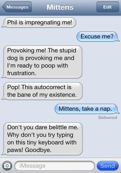 LMAO cat texting is soo much funnier then the dog texting ones I can't even!! Funny Animal Memes, Funny Animals, Funny Quotes, Animal Quotes, Dog Texts, Funny Texts, Text From Mittens, Cat Text, Text Conversations