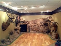 Custom Trophies, Man Cave Room, Trophy Rooms, Construction Services, Rock Wall, Taxidermy, Archery, Game Room, Hunting