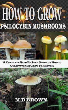Edible Mushrooms, Wild Mushrooms, Stuffed Mushrooms, Growing Psychedelic Mushrooms, Mushroom Guide, Mushroom Recipes, Gardening Tips, Organic Gardening, Growing Mushrooms At Home