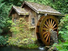 Every garden needs a water wheel.
