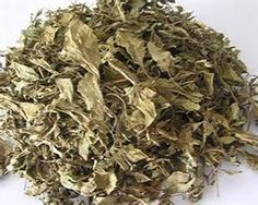 Yum Rush Inc. - Basil Leaves WS, $105.00 (http://www.yumrush.com/basil-leaves/wholesale)