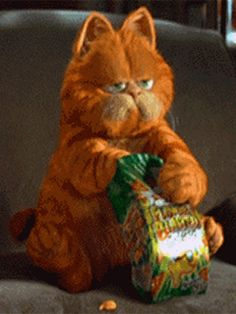 Find GIFs with the latest and newest hashtags! Search, discover and share your favorite Garfield GIFs. The best GIFs are on GIPHY. Funny Videos, Gif Bonito, Gif Lindos, Gif Pictures, Cute Gif, Cat Memes, Cat Art, Animated Gif, Cute Cats