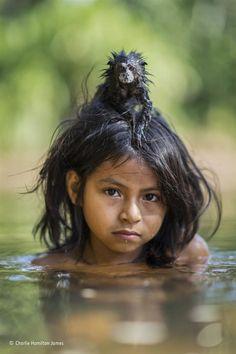 """""""Hijos de la lluvia del bosque"""" - Foto: Charlie Hamilton James, UK."""