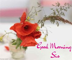 good-morning-sis-picture Good Morning Sister Images, Good Morning Flowers Pictures, Good Morning Beautiful Flowers, Good Morning Roses, Good Morning Beautiful Images, Good Morning Photos, Good Morning Gif, Good Morning Greetings, Morning Pictures