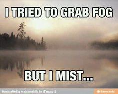 Rainy fog bay area