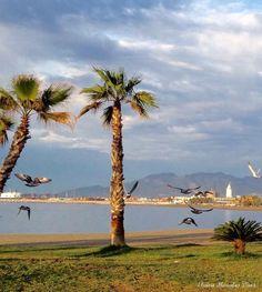 Playa de la Malagueta, Málaga. Fotografía de Eloisa Morales Díaz
