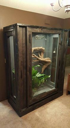 Awesome enclosure