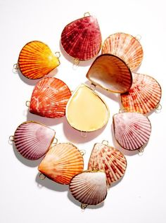 Solid Botanical Perfumes in Seashell Cases. Beautiful!!!!