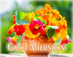 Good Afternoon - Best Pictures, Photos & Messages. #EverydayEcards, #GoodDayWishes, #GreetingsPics http://greetings-day.com/good-afternoon-best-pictures-photos-messages.html