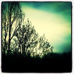Morning lights...