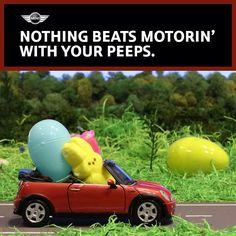 That time when MINI did a harrowing, stop-motion tale of PEEPS® bunnies & their MINI Convertible. #stopmotion #Easter