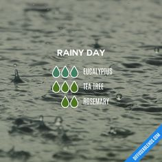 Rainy Day — Essential Oil Diffuser Blend