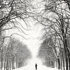 Nature photography, Paris art, Paris photo, Paris print, Black and white, Snow photography, Winter forest photography, 6x6 (15x15cm). PhotographyDream etsy