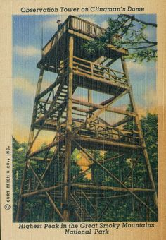 Observation tower on Clingman's Dome