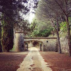 Difficult roads often lead to beautiful destinations. #keeponwalking #autumn #autumncolors #aboutlastweekend #countryside #catalunya #maresme #igersmaresme #secretspots #loveit #enjoyeverymoment #havefun #worryless #workhardplayhard #autumnvibes #notbadatall #nature #catalonia #road #ride #enjoytheroad #enjoylife #wanderlust #travelersoul