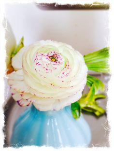 Mini- Vase auf www.dekomagie.de