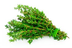 5-Minute Health Tip: Take a Thyme Out | Underground Health Reporter