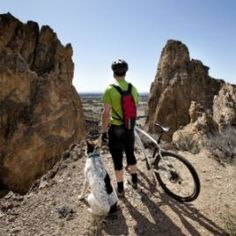 Rides with your pooch can be a great way for both you to stay fit, but it can also be dangerous and damaging for them. Mtb Trails, Mountain Bike Trails, Biking With Dog, Road Bikes, Your Dog, Pup, Stay Fit, Dogs, Outdoor