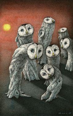 Owl ~ Hiromi Nishizaka