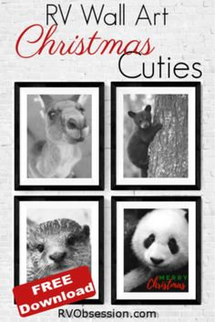 Pinterest pin graphic - 4 prints of different animal faces with a Merry Christmas greeting. Decorating Your Rv, Merry Christmas Greetings, Animal Faces, Holiday Festival, Pinterest Pin, Christmas Decorations, Wall Art, Festive, Animals