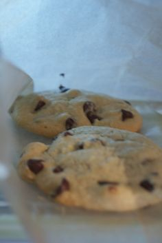 The Primitive Foodie: The Best ever Almond Flour Chocolate Chip Cookies