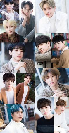Seventeen Memes, Seventeen Woozi, Carat Seventeen, Seungkwan, Wonwoo, Jeonghan, Band Pictures, Group Pictures, Seventeen Wallpapers