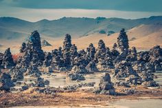 8 Great Reasons To Visit Mongolia in 2017 - Quokka Travel