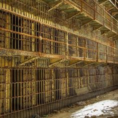 Old abandoned prison...which she uses for the contaminated animals she catches?