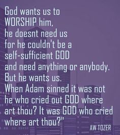 """God wants us to WORSHIP him, he doesnt need us for he couldn't be a self-sufficient GOD and need anything or anybody. But he wants us. When Adam sinned it was not he who cried out GOD where art thou? It was GOD who cried where art thou?""""   - AW Tozer"""