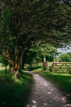 New nature pictures country paths Ideas Country Life, Country Living, Country Roads, Country Farm, Landscape Photography, Nature Photography, Photography Tricks, Digital Photography, Photography Studios