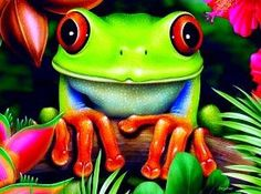 Realistic illustrations of animals, plants and flowers in by Illustrator Lori Anzalone Funny Frogs, Cute Frogs, Frog Illustration, Graphic Illustration, Tree Frog Tattoos, Frog Drawing, Frog Pictures, Frog Art, Lesage