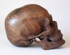 """-  Dan Lucas of Portland, Oregon carved this gorgeous skull from black walnut. He says, """"The light spot at the top of the skull is an old rectangular nail totally embedded in the wood—I didn't find it until I cut into the block.""""  ViaSkullaDay"""