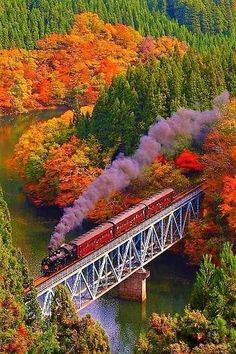 Agawa Canyon Ride on the special train traveling through the maple paradise of North America