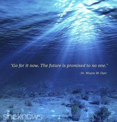 Wayne Dyer Quotes Wayne Dyer Quotes  Make A Vision Board  Pinterest  Wayne Dyer .