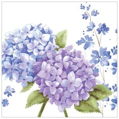 Card - Floral - Blue Hydrangeas Presentation: With a white 100 gsm envelope. Blank for your own message .. take a look on my website or look me up on Facebook .. https://www.facebook.com/pages/Phoenix-Trading-Kathryn-Pilmore-Independent-Trader/204792026364315