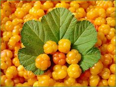 Cloudberries from Finland Welcome To Sweden, Strange Fruit, Swedish Recipes, Weird Food, Salad Bar, Cranberries, Felt Flowers, Fruits And Vegetables, Natural World