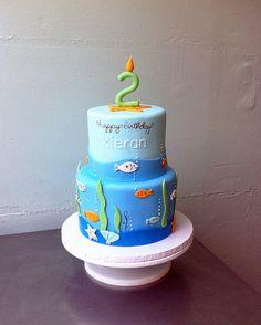 Kieran's Fishies | Flickr: Intercambio de fotos