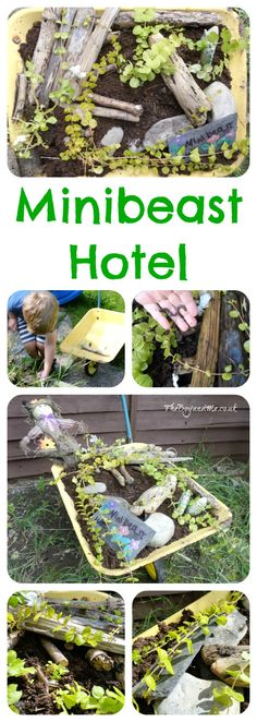 How To Make A Minbeast Hotel: using an old container, soil, damp stones and rotten wood to create hiding places. A wonderful child-led activity.