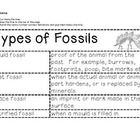 An activity about the four types of fossils (mould, cast, petrified, and trace).  Students cut out the terms and definitions.  Then they match an...