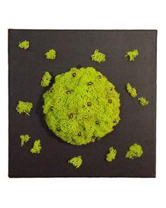 Tableau végétal stabilisé 30 x 30 cm lichen 024 de Caly-design-vegetal sur DaWanda.com Decoration, Kids Rugs, Etsy, Vintage, Design, Home Decor, Wall Art, Painted Canvas, Handmade Gifts