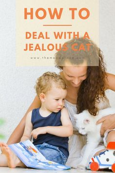 Do cats get jealous? Here's how to curb aggressive behavior in a jealous cat. | How To Deal With A Jealous Cat | #catbehavior #training #aggression