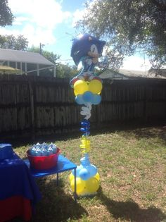 Angel David's Sonic the Hedgehog Birthday    CatchMyParty.com