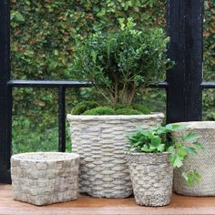 Cement basket planter Twined Weave. A likeness of antique wickerwork baskets cast in cement with a waterproof interior and will wear when outside, gaining char